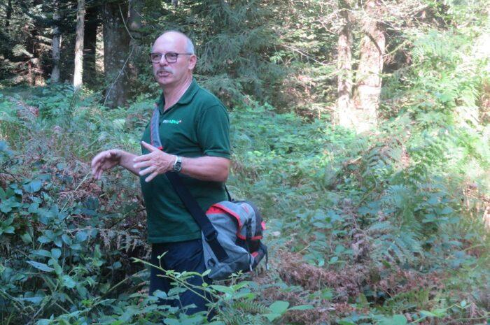 Waldtag vom 05.09.2021 zum Thema Insektenwelt des Ökosystem Wald